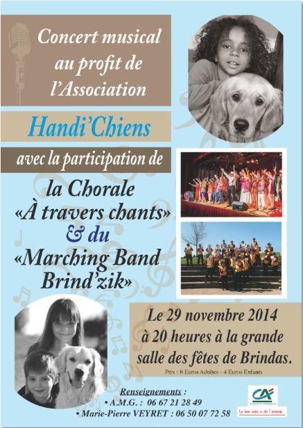 Concert Handi chien LE 29 NOVEMBRE 2014